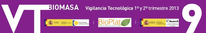 Boletín de Vigilancia Tecnológica del sector de la Biomasa Nº 9 (primer semestre 2013)
