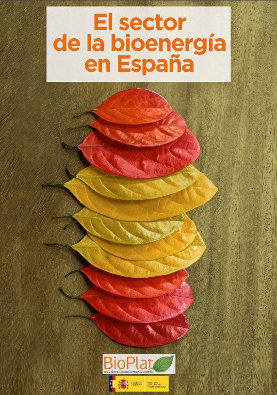 Informe sector bioenergía España dic2015