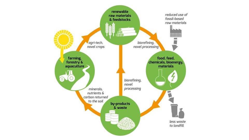 Recomendaciones de BIOPLAT para la Estrategia de Economía Circular