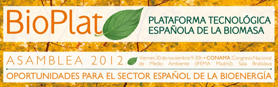 Asamblea BIOPLAT 2012 – Documentación disponible