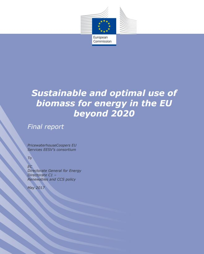 Two reports from the European Commission analyze the sustainable use of biomass and biogas beyond 2020