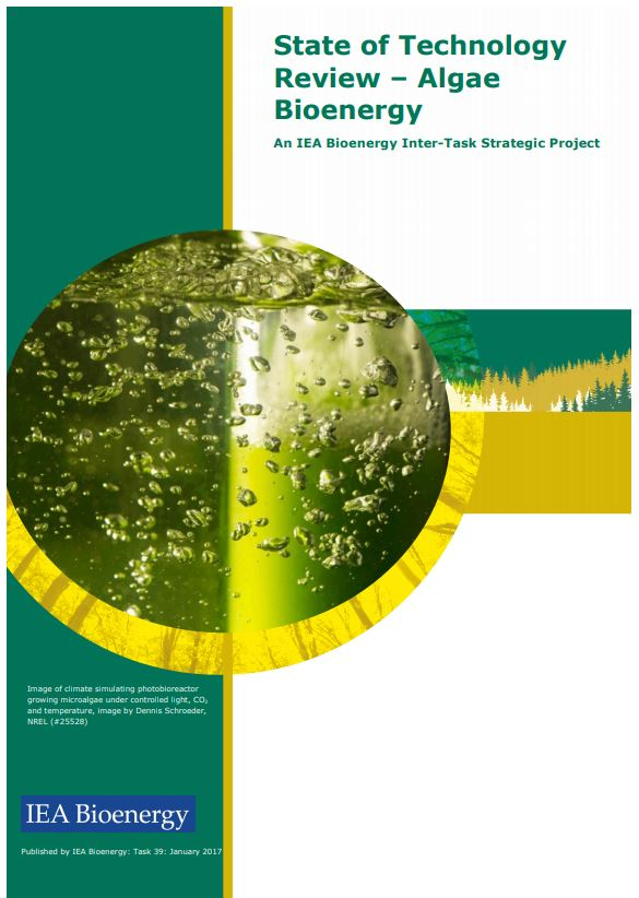 Informe 'State of Technology Review – Algae Bioenergy' (IEA Bioenergy)