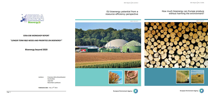 Three key reports on bioenergy in the EU: priorities in R & D, potential and viability of use