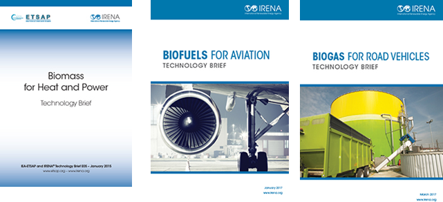 Three 'Technology Briefs' on biomass, biofuels for aviation and biogas published by IRENA