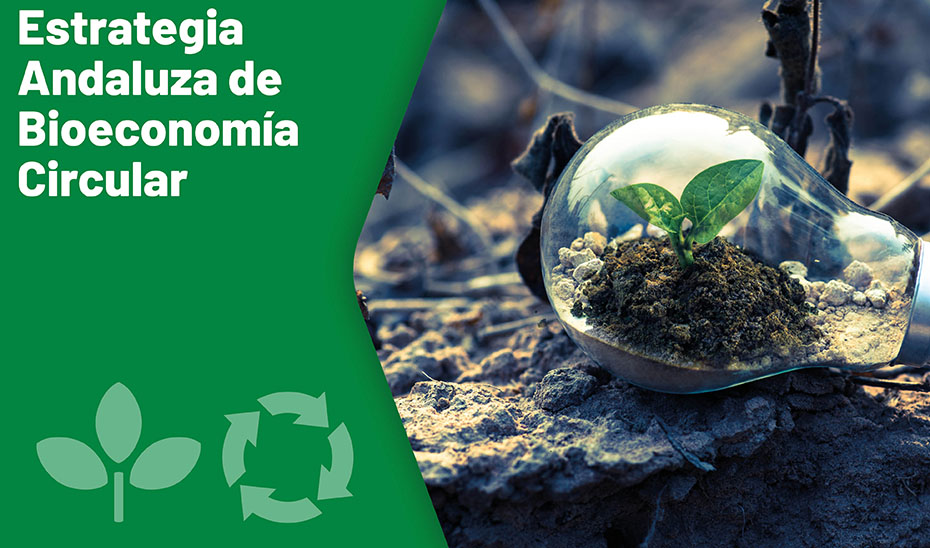 THE ANDALUSIAN STRATEGY OF CIRCULAR BIOECONOMY SEEKS TO IMPULSE THE BIOINDUSTRIES AND THE CONSUMPTION OF BIOPRODUCTS AND BIOENERGY