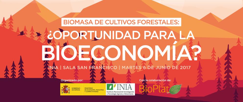 Biomasa procedente de cultivos forestales: valioso activo de la bioeconomía