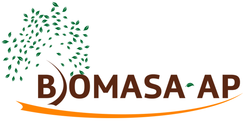 BIOMASA-AP, a project for the improvement of the R&D capacities in biomass, optimizing its management and use