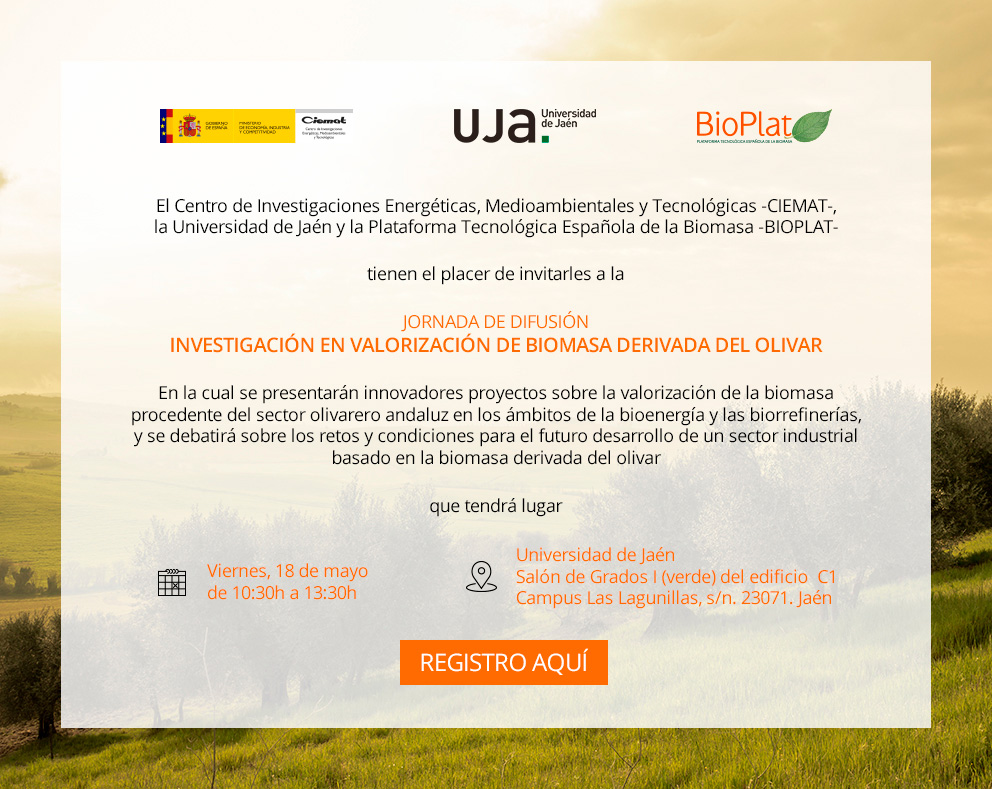 BIOPLAT participates in the organization of the Workshop: Research in Valorization of Biomass derived from the Olive Grove