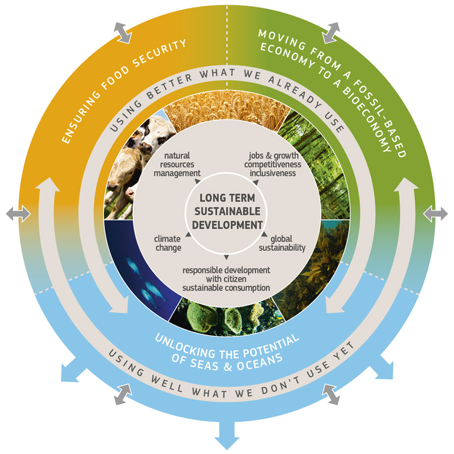 BIOPLAT recommendations for the Update of the 2012 European Bioeconomy Strategy