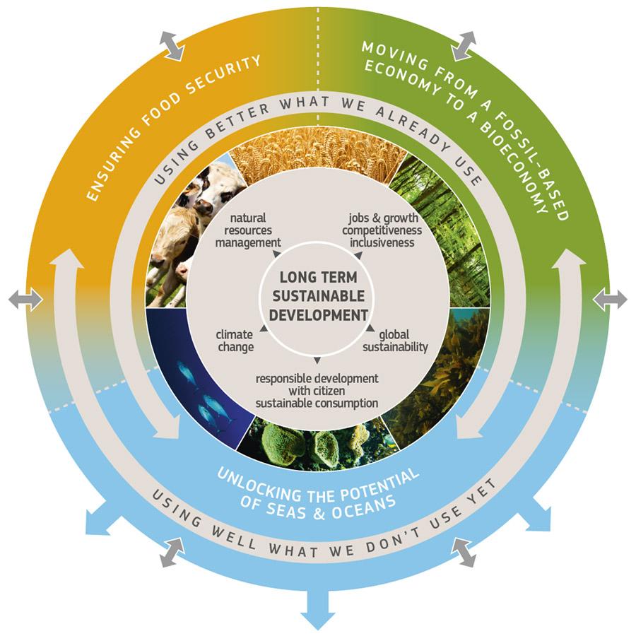 BIOPLAT aporta sus recomendaciones a la Estrategia Europea de Bioeconomía