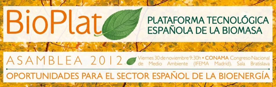 (Español) Asamblea BIOPLAT 2012 – Documentación disponible