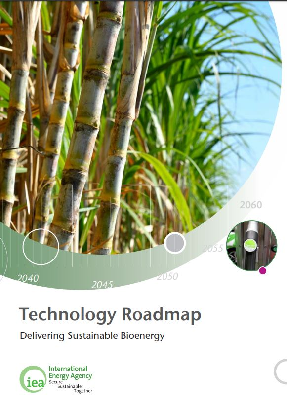 La Agencia Internacional de la Energía (IEA) publica la Hoja de Ruta de bioenergía