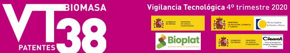 Boletín de Vigilancia Tecnológica BIOENERGÍA Y BIOPRODUCTOS Nº 38 (4º trimestre 2020)