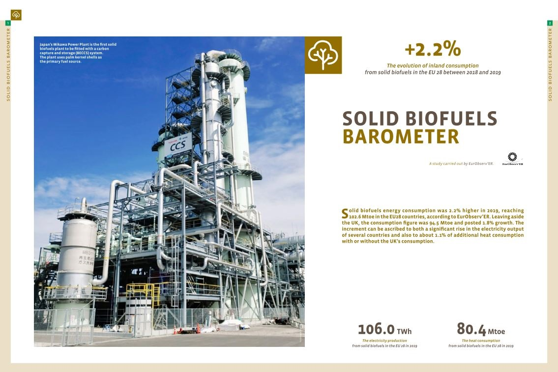 Biomass in Europe: Consumption of solid biofuels grows in 2019