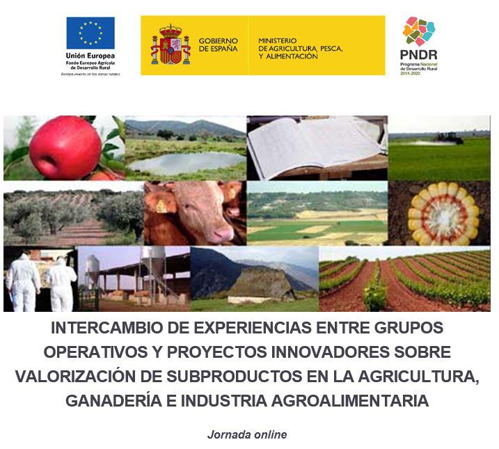 (Español) Jornada online: Intercambio de experiencias entre Grupos Operativos y proyectos innovadores sobre valorización de subproductos en la agricultura, ganadería e industria agroalimentaria (21 abril)