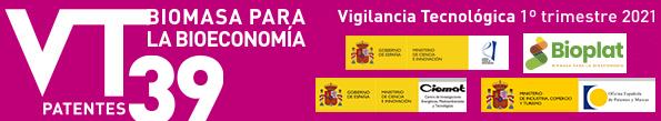 (Español) Boletín de Vigilancia Tecnológica BIOENERGÍA Y BIOPRODUCTOS Nº 39 (1er trimestre 2021)
