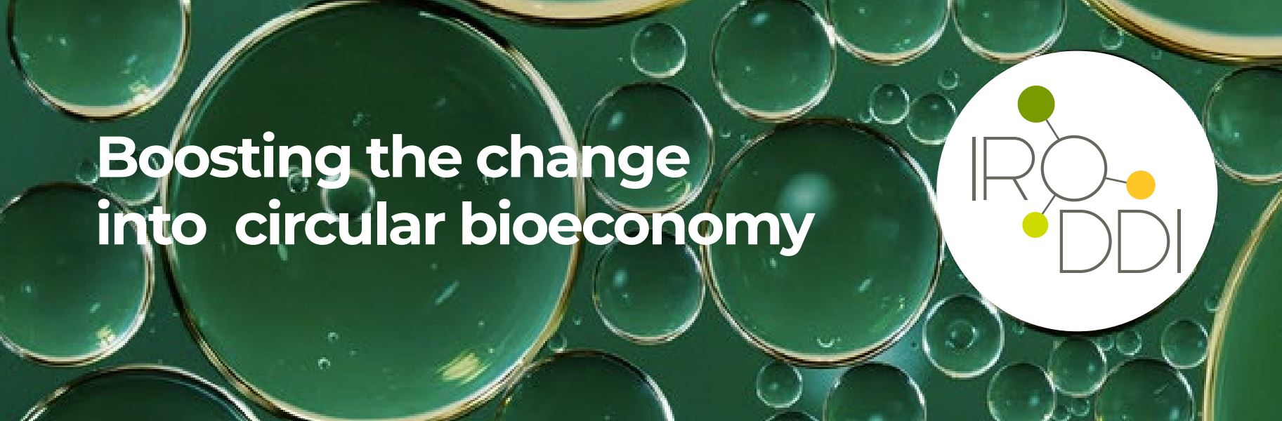 IRODDI continues with its focus on the circular bioeconomy
