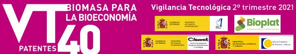 (Español) Boletín de Vigilancia Tecnológica BIOENERGÍA Y BIOPRODUCTOS Nº 40 (2º trimestre 2021)